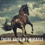 Buy There Goes My Miracle (CDS)