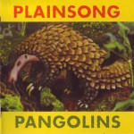 Buy Pangolins