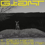 Purchase Calvin Harris & Rag'n'bone Man Giant (CDS)