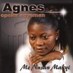 Purchase Agnes Opoku Agyeman Me Nnsan Makyi