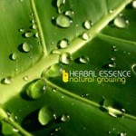 Purchase Herbal Essence Natural Growing
